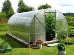 Скачать бесплатно бизнес план тепличного хозяйства