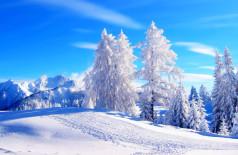 идеи зимнего бизнеса