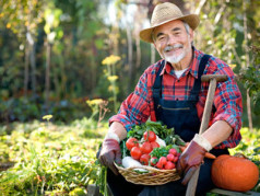 Фермерство как бизнес