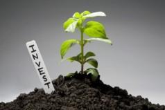 Где найти инвестора для малого бизнеса с нуля