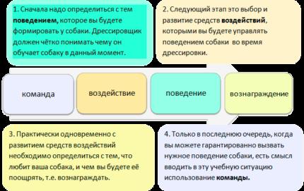 Изображение - Бизнес идеи с небольшими вложениями в украине Dresirovka-sobak-430x271