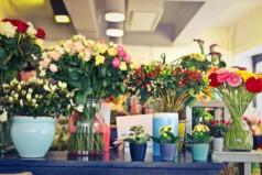 Бизнес план цветочного магазина с расчетами